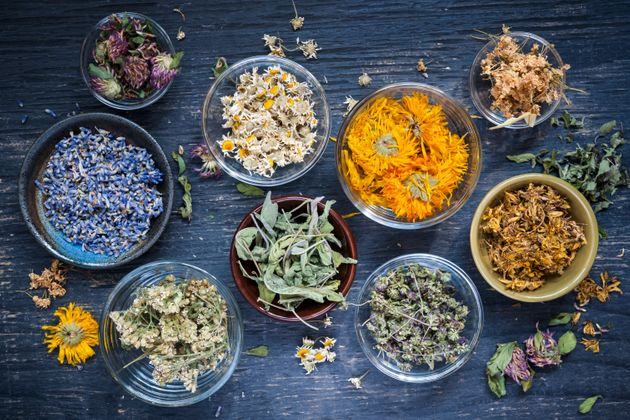 Various dried medicinal herbs and herbal teas in several bowls on blue wooden background from