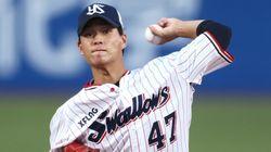 高橋奎二投手とは?板野友美さんと結婚、センバツ優勝を経てヤクルト左のエース候補に