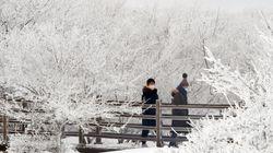 체감온도 -24도 : 상상을 초월하는 북극발 한파가