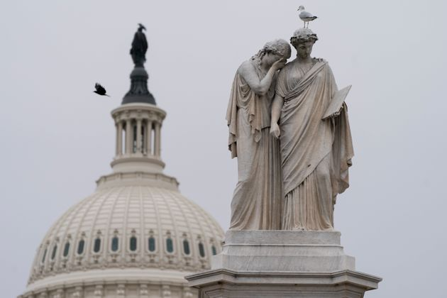 Birds fly around the Peace Monument, Friday, Jan. 8, 2021, on Capitol Hill in Washington. (AP Photo/Jacquelyn