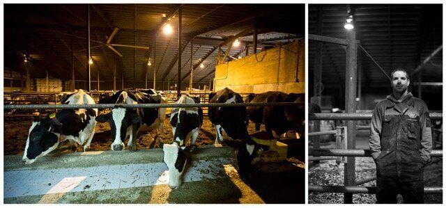A photo in the 5 a.m. project: Dan - Dairy Farmer - Cressridge Farms.