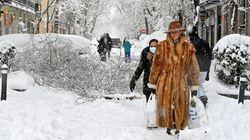 Quién es la misteriosa mujer del abrigo de piel que arrasa en Twitter tras la