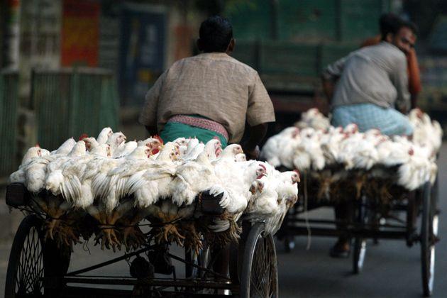 125만원어치 닭 공짜로 먹고도 '별점 테러' 리뷰를 남긴 경기도 한 군부대에 네티즌들이 분노하고
