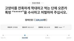 猫を弓で撃ち殺す…。残虐の虐待動画を共有するチャット部屋に処罰求める声相次ぐ 韓国で