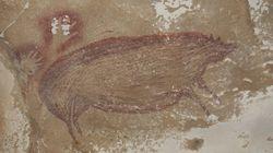 Ανακαλύφθηκε στην Ινδονησία η αρχαιότερη σπηλαιογραφία ζώου στον