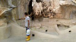 Bernini sfigurato, spuntano foto e testimoni (di T. De