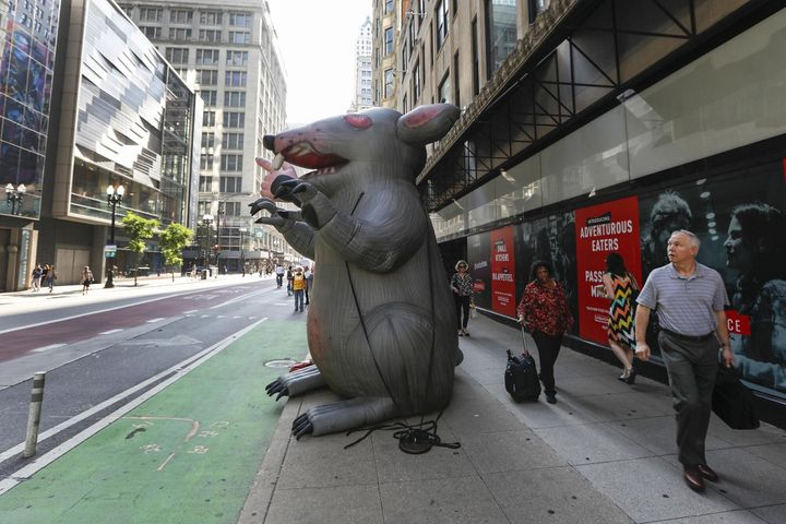 Created in Chicago nearly 30 years ago, Scabby, the giant inflatable union protest rat that has become a fixture at picket li