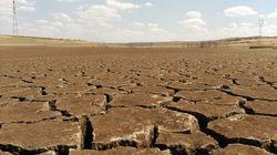 Las olas de calor matan a más personas que cualquier otro fenómeno meteorológico extremo: estas ciudades tienen un