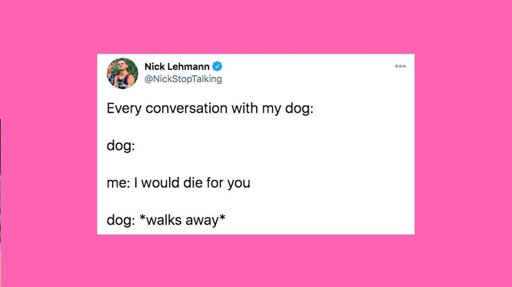 30 Of The Funniest Tweets About Cats And Dogs This Week
