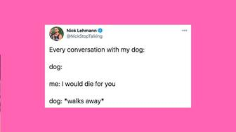 funniest-tweets-cats-dogs-january-8-15
