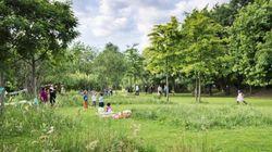 ΥΠΠΟΑ: Πράσινο φως για την δημιουργία χώρων αναψυχής στο
