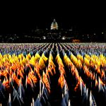 Stunning 'Field Of Flags' Lights Up In National Mall Ahead Of Biden