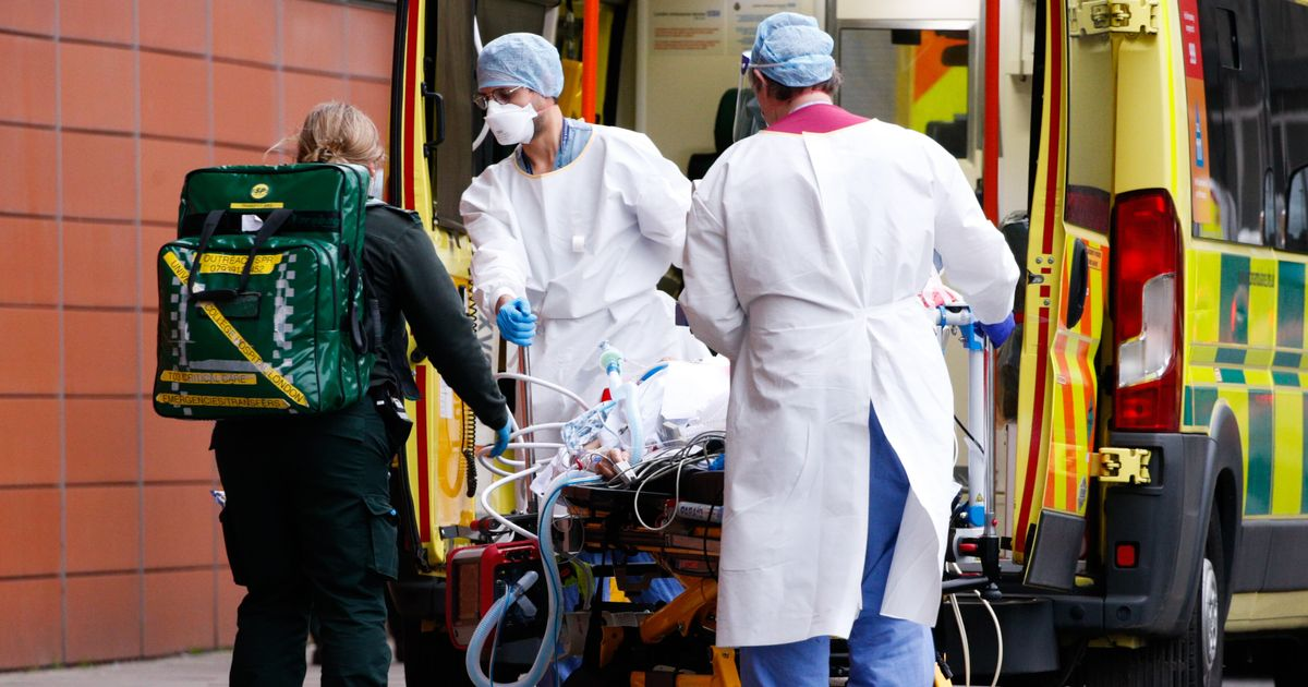 Revealed: The Deadliest Days Of The Pandemic So Far
