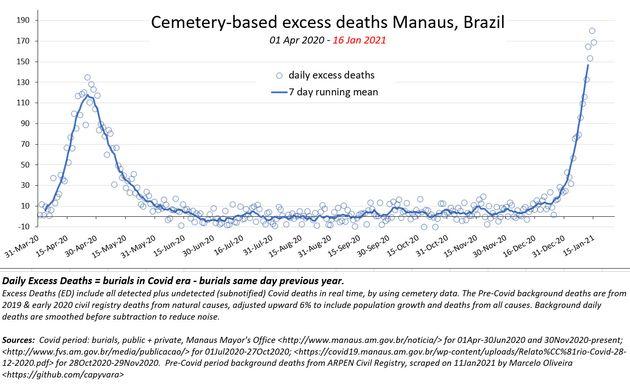 La surmortalité quotidienne à Manaus depuis le mois de mars