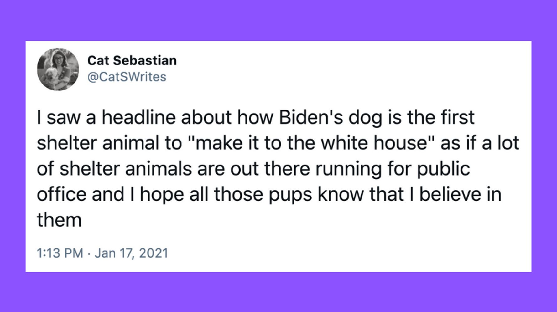 22 Of The Funniest Tweets About Cats And Dogs This Week (Jan. 16-22)