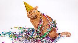15 personas se contagian de coronavirus por asistir a la fiesta de cumpleaños de un