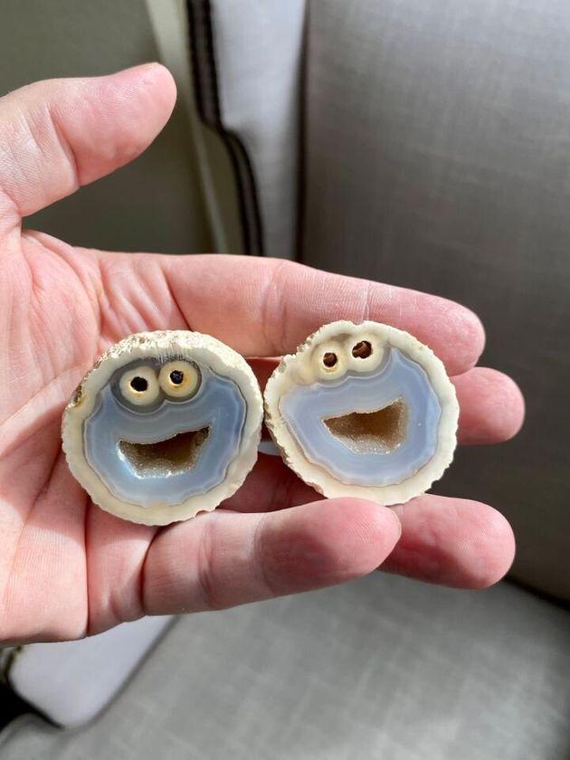 クッキーモンスターそっくりの石が発見 ⇒