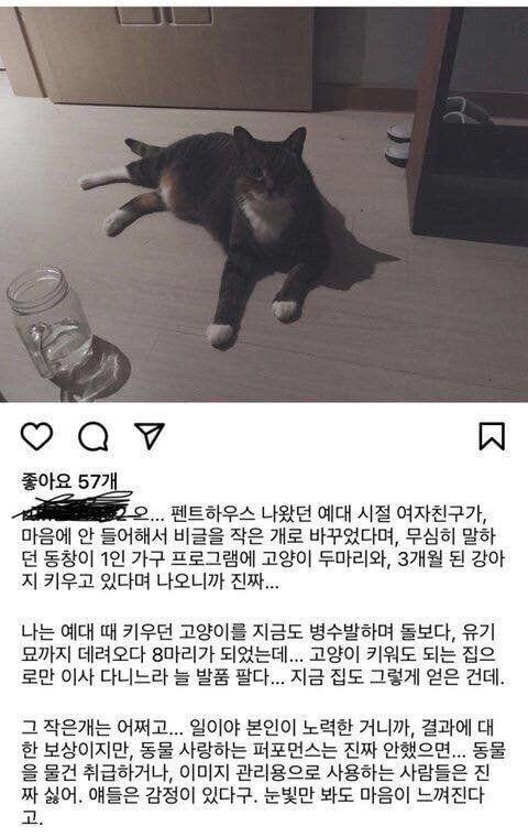 배우 박은석이 반려견 유기 논란에