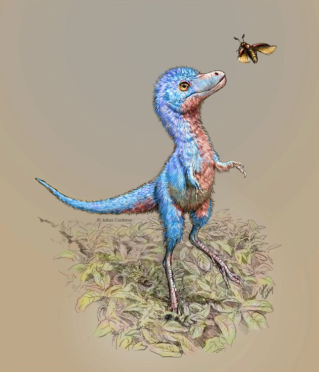 An artist's rendering of what the babies might have looked