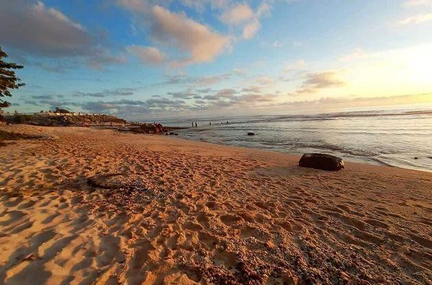 ナウルの砂浜