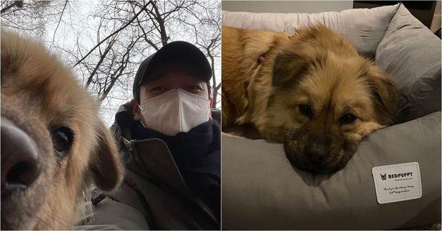 조승우가 경남 고성 유기견보호소를 찾아 입양한 유기견 근황이 공개됐다. 이름은