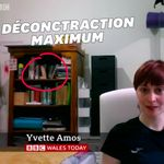 Cette invitée de la BBC avait une décoration classée X sur son