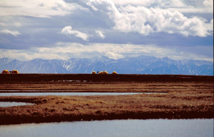 A bird research camp is pictured in Alaska's Arctic National Wildlife Refuge.