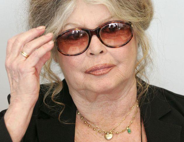 Brigitte Bardot en una cumbre de medio ambiente en Bruselas en