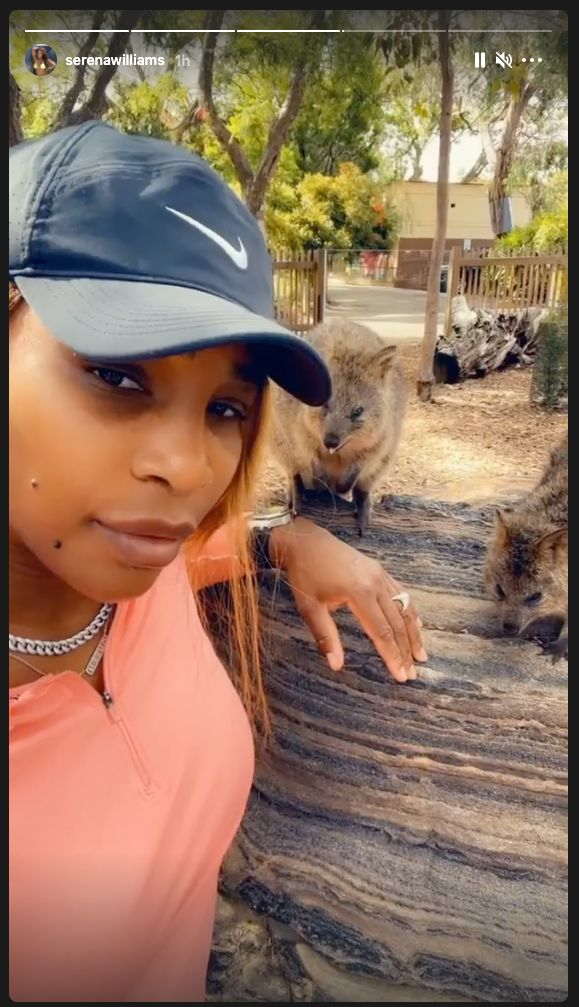Serena Williams goes to the zoo in Adelaide on Friday after completing two weeks of hotel quarantine with her daughter.