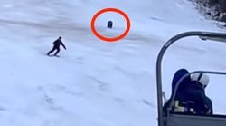 Skier's 'Cool Move' Throws Very Determined Bear Off His