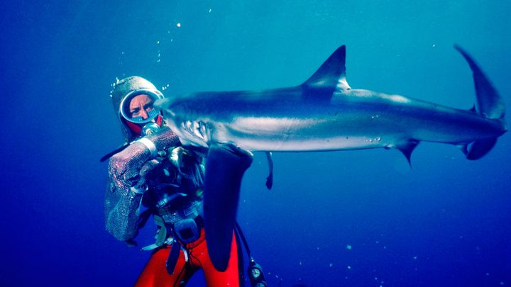 """Valerie Taylor in """"Playing with Sharks."""""""