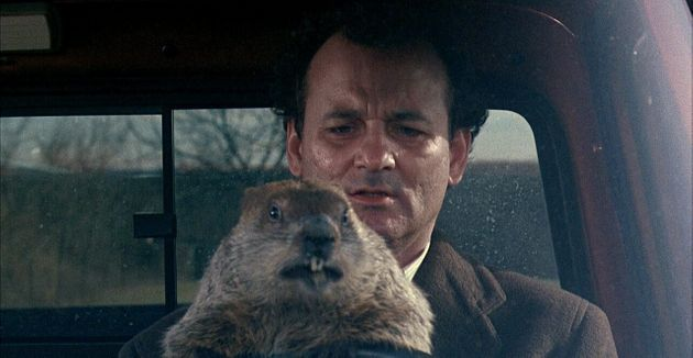 Bill Murray in Groundhog