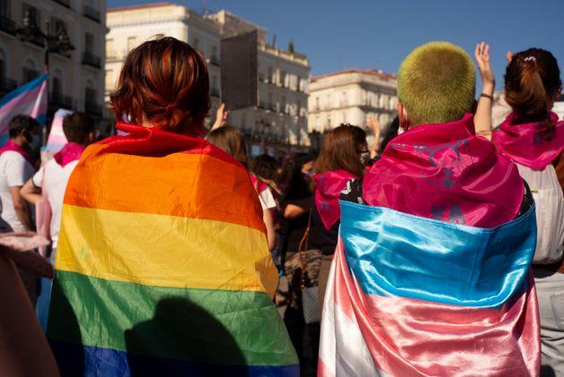 Image result for Un grupo de manifestantes feministas protestan ante Igualdad contra las leyes trans y LGTBI