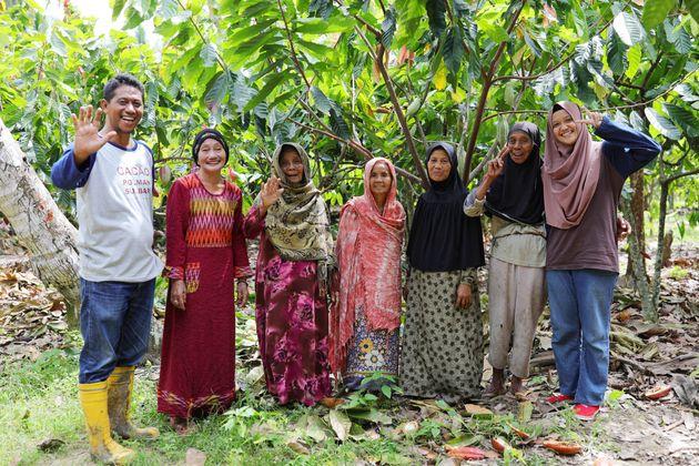 インドネシア・スラウェシ島の農園でカカオを育てる農家さん