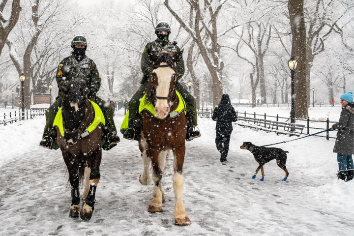 Two members of the NYPD elite mounted unit patrol are seen in New York City's Central Park during Sunday's snowstorm.