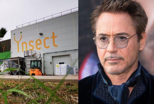Robert Downey investit des millions dans une start-up française productrice d'insectes