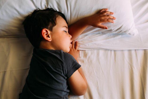 Dormir la siesta está determinado por nuestros