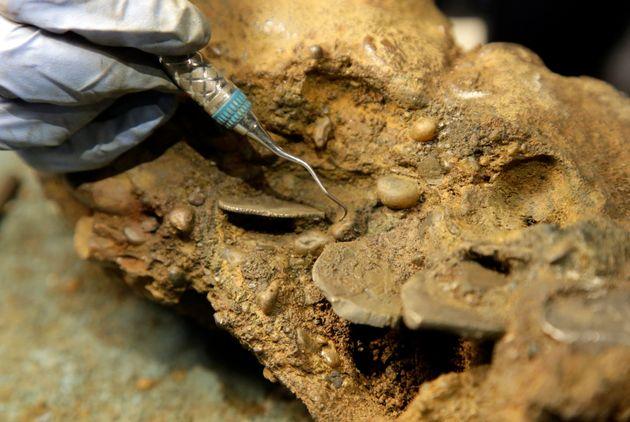 写真は、コンクリーションに覆われた銀貨を外そうとする考古学者のマリー・ケステン・ザーン氏。この銀貨はウィダー号で発見されたものだ(2016年9月21日)