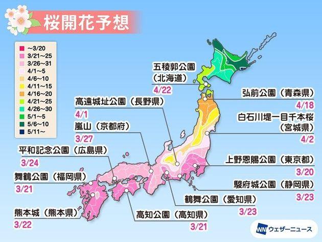 全国の主な名所の桜開花予想