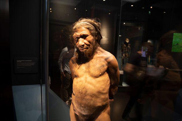 Γονίδιο - κληρονομιά από τους Νεάτερνταλ μας προστατεύει έναντι σοβαρής νόσησης από