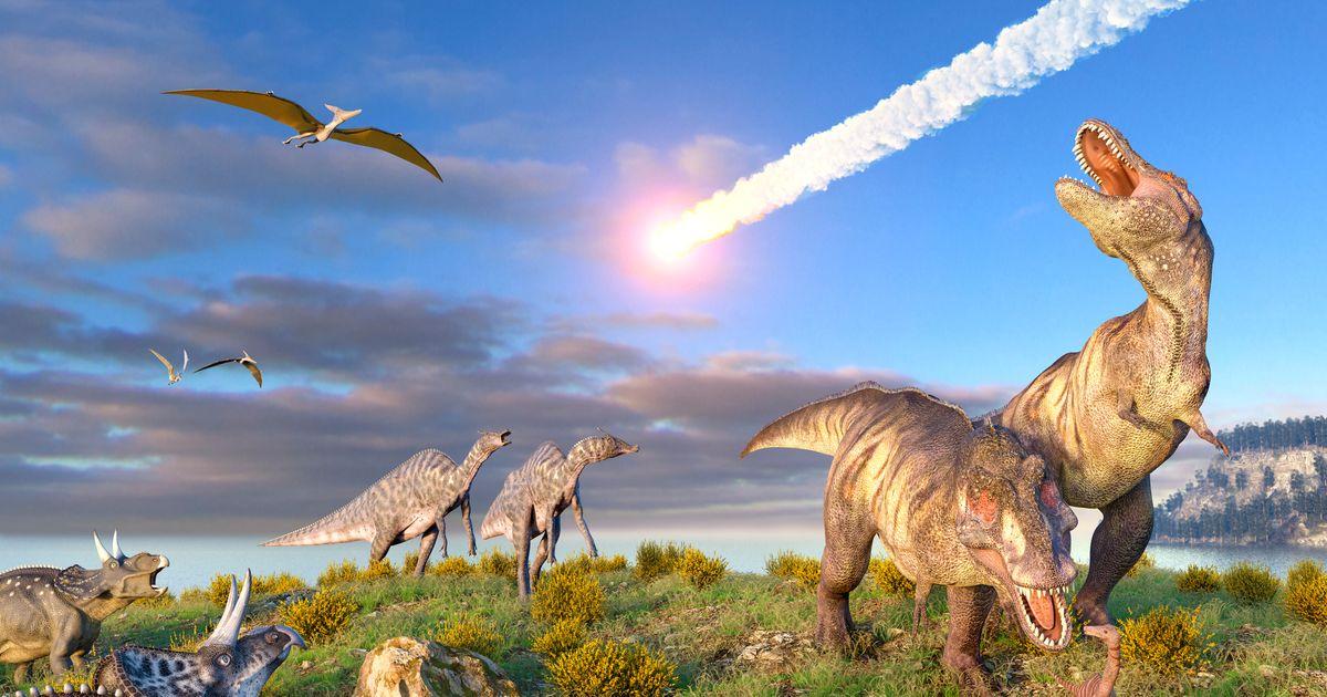 Les dinosaures ont disparu à cause d'une comète et non d'un astéroïde, selon une étude - Le HuffPost