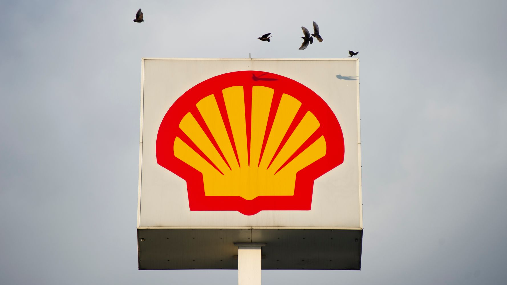 Despite Its Pledges, Shell Funded Anti-Climate Lobbying Last Year