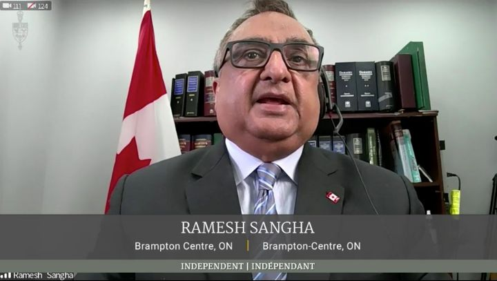 Independent MP Ramesh Sangha makes a statement during a hybrid sitting of the House of Commons on Feb. 17, 2021.