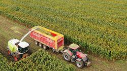 Pour la première fois, des chercheurs prouvent le lien entre pesticides et