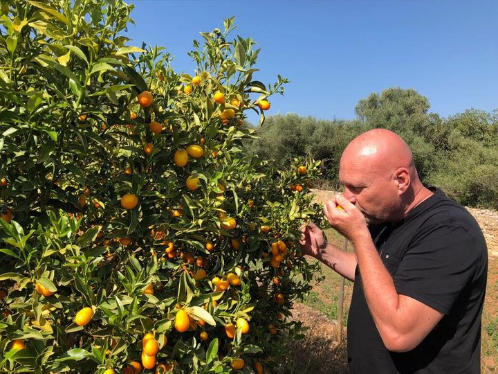 Marc Fosh picking veg for his restaurant