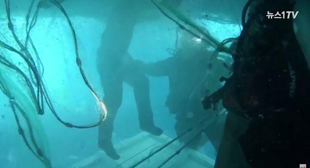 중앙특수구조단과 포항해경 구조대원들이 21일 경주 감포 동방 42km 해상에서 뒤집힌 어선 어창에서 생존 선원을 구조하고 있다.