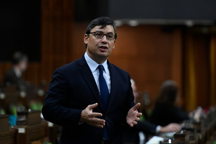 Conservative MP Michael Chong rises in the House of Commons on  Dec. 10, 2020.