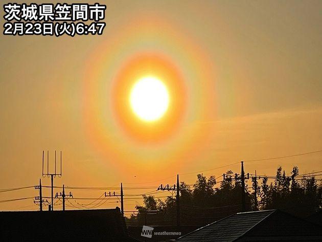 「花粉光環」が関東に出現。今シーズン一番の花粉飛散量になる可能性