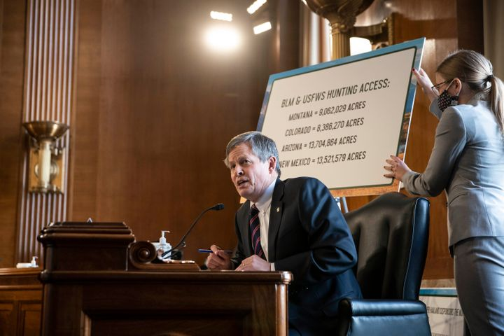 Sen. Steve Daines (R-Mont.) speaks during Interior Secretary nominee Deb Haaland's confirmation hearing before the Senate Committee on Energy and Natural Resources.