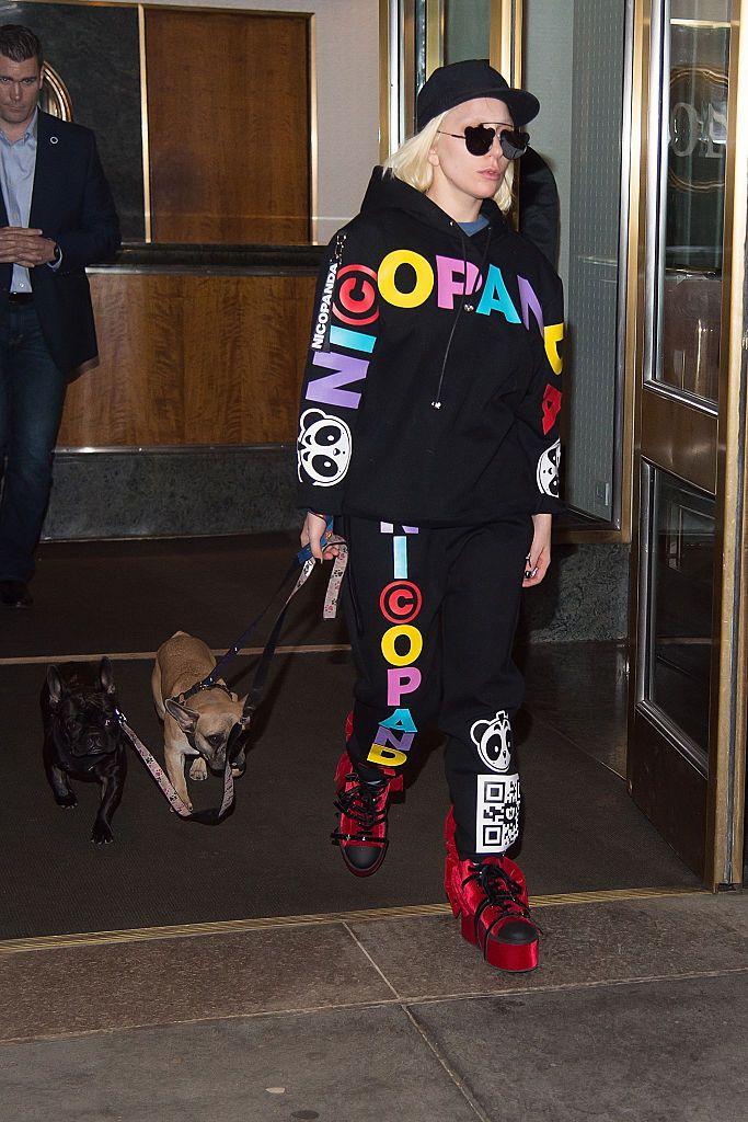 Lady Gaga con sus perros Miss Asia y Koji en Nueva York
